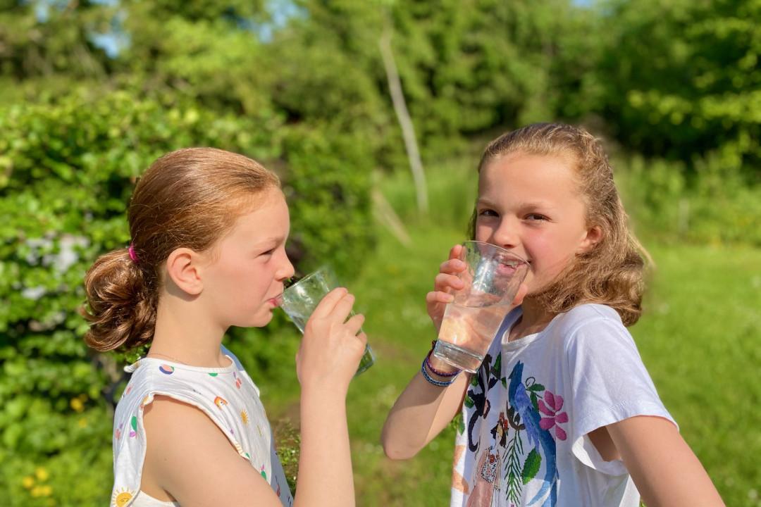 Adoucisseur d'eau ecologique à injection de Co2