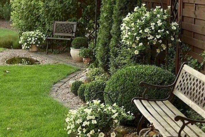 Entretien annuel de votre jardin